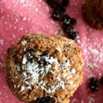 oatmeal_cookies_grainfree