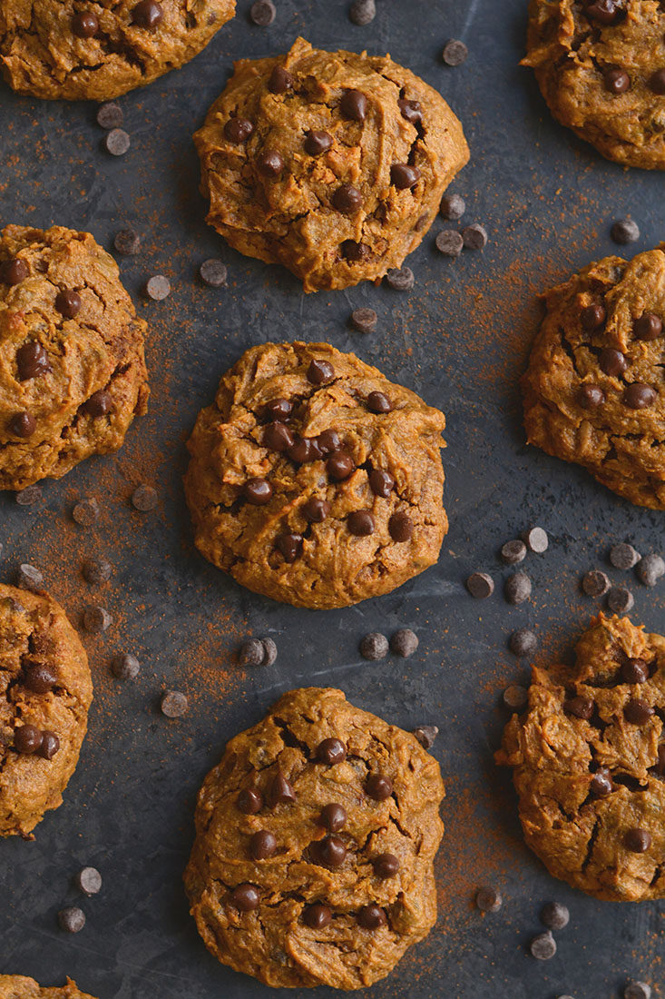 Get your pumpkin & chocolate fix with acreamy, melt-in-your-mouthPumpkin Peanut Butter Chocolate Chip Cookie. Low Calorie, Paleo, Gluten Free and Vegan!