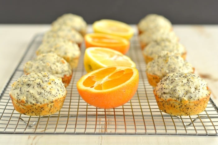 Lemon Orange Poppyseed Muffins! These vibrant & creamy Greek yogurt packed muffins are bursting with citrus. A light & fresh gluten free, low calorie snack!