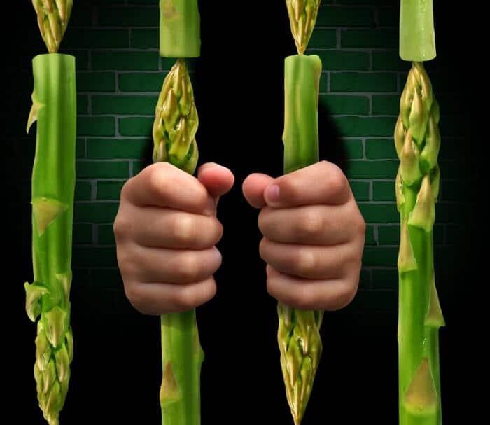 food-jail
