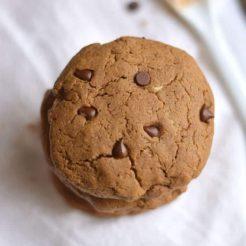 Chocolate Peanut Butter Protein Cookies {GF, Low Cal, Vegan}