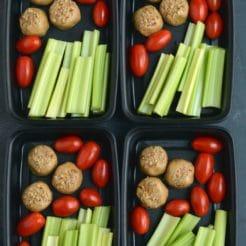 Meal Prep Protein Bite Snack Box {Vegan, GF, Low Carb}