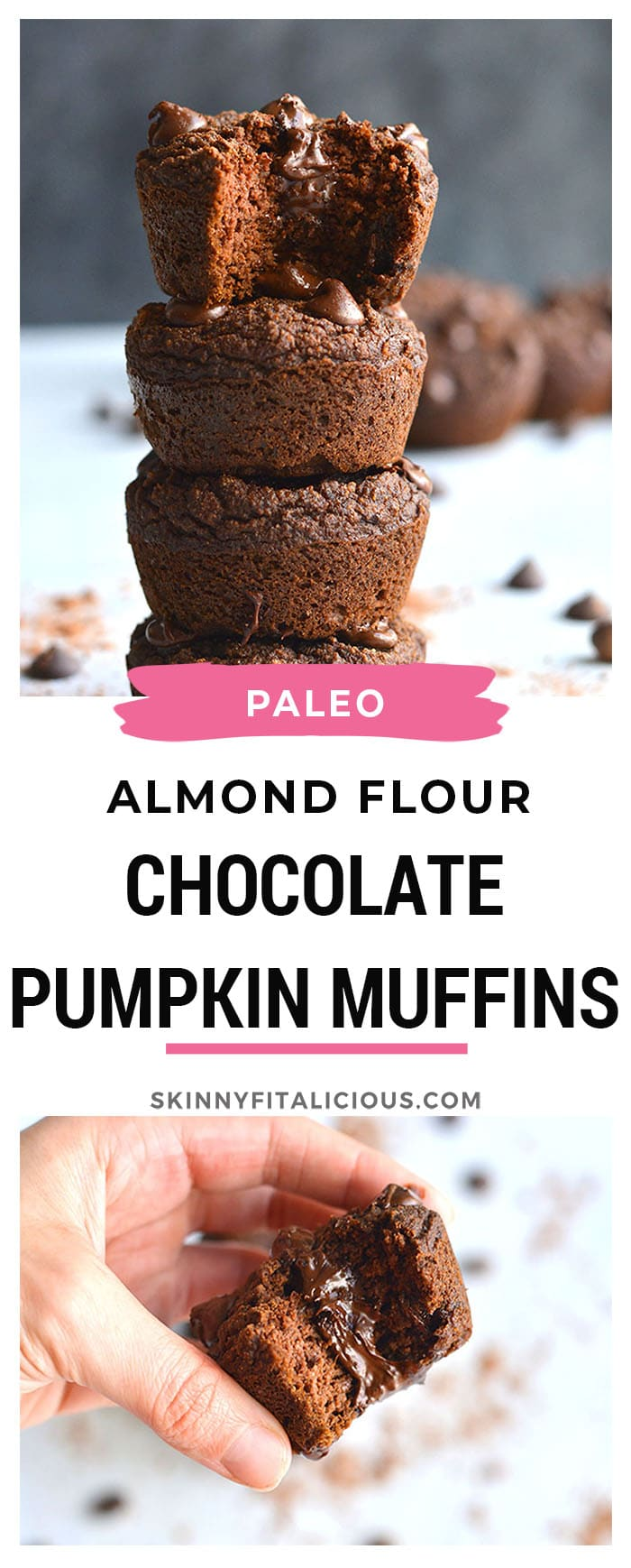 Chocolate Pumpkin Almond Flour Muffins! These muffins are Paleo, dairy-free and lightlysweetenedwith maple syrup. A great gluten free snack anytime of day!
