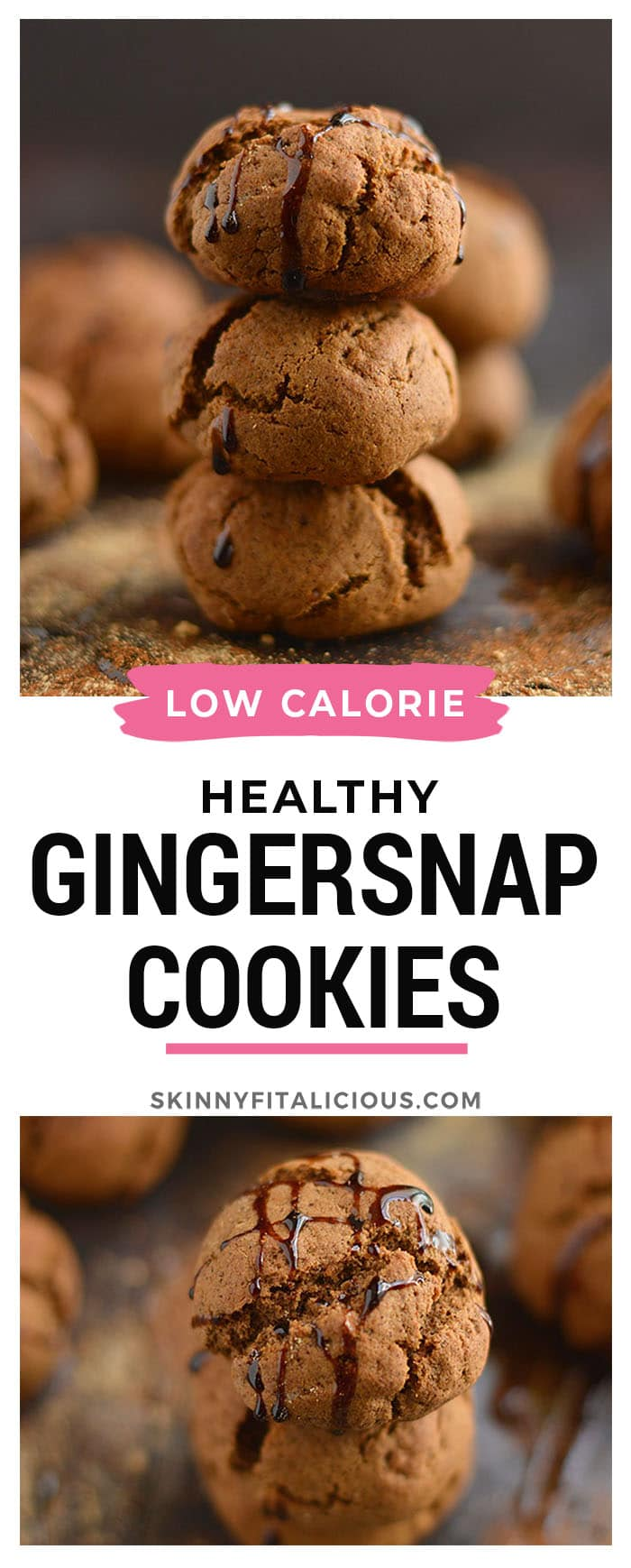 Healthy Protein Gingersnaps only 100 calories! Made low in sugar and big on taste, these doughy cookies are winter baking must haves.